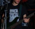 24-ga-ga-zielone-zabki